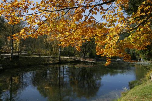Umgebung-Kurort-Bad-Landeck-Teich